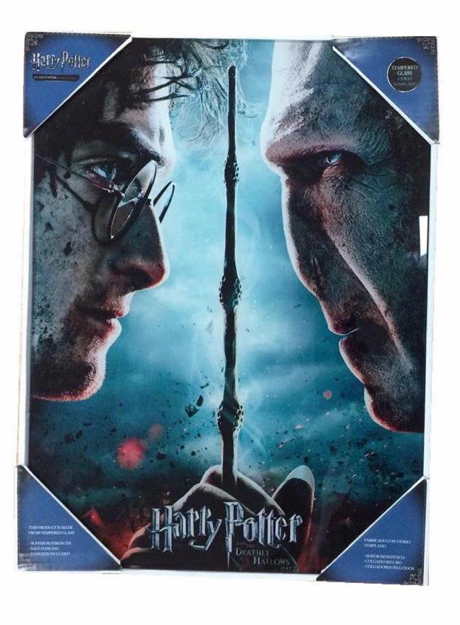 HARRY POTTER Y VOLDEMORT POSTER DE VIDRIO 30X40 HARRY POTTER | 8435450200717 | Universal Cómics